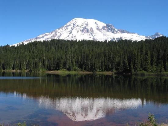 Mont Rainier au loin